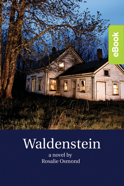 Waldenstein eBook