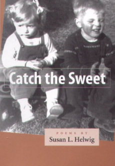 Catch the Sweet